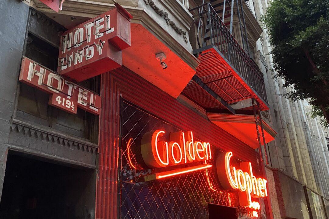 Golden gopher dtla
